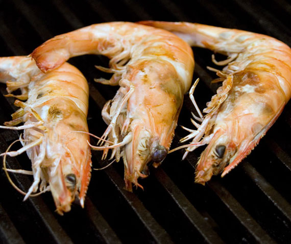 Shrimp on Barbie
