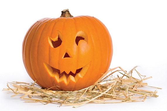 http://www.recipebridge.com/r/pumpkin-recipes